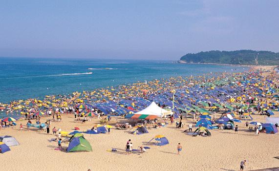 속초해변축제